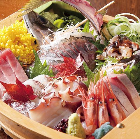 片町店で希少な鮮魚を食べよう。